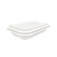 750ml Compostable Sugarcane Pulp Rectangle Box with Lid